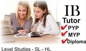 IB macro economics IA commentary extended essay help tutors example sample eco